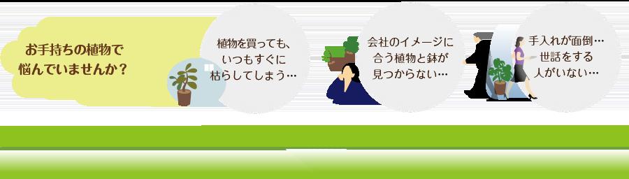 お手持ちの植物で悩んでいませんか?「グリーンレンタル」で解決!!