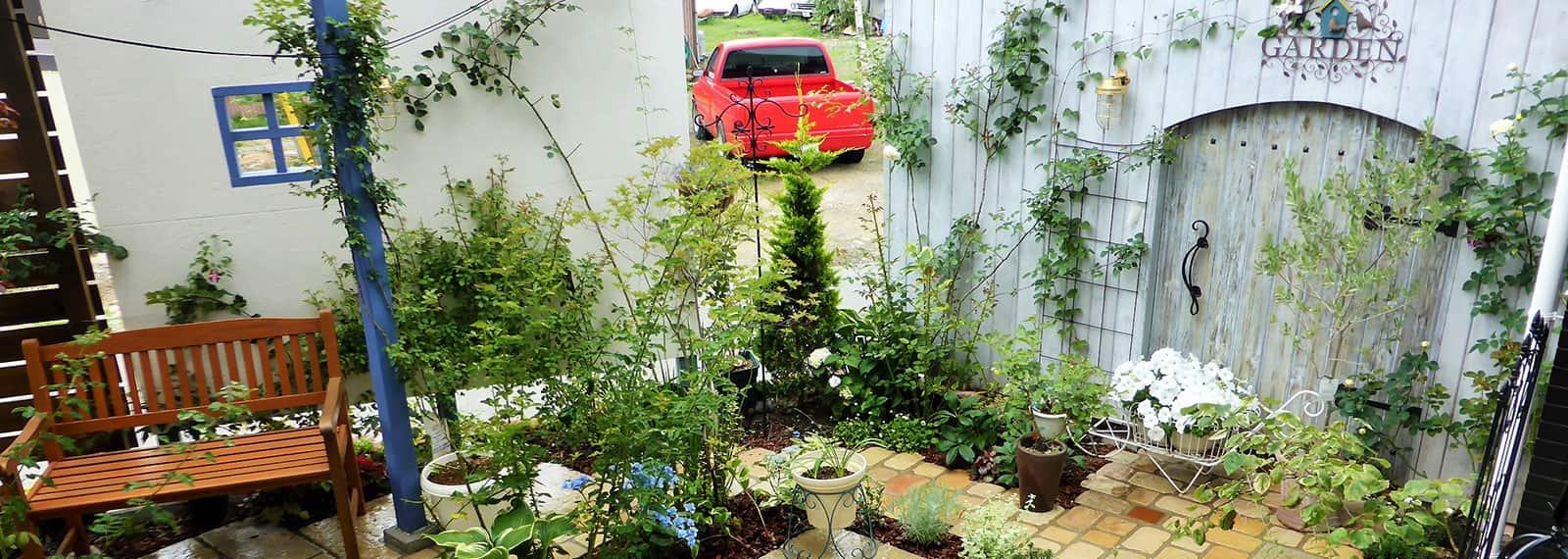 植木・庭木手入れ