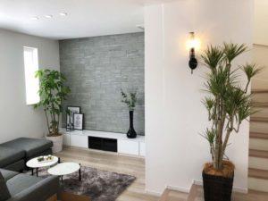 モデルルームへ観葉植物のレンタル