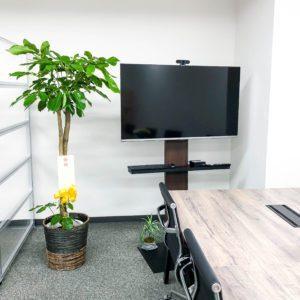 【事例紹介】IT系会社の移転のお祝いに贈る観葉植物