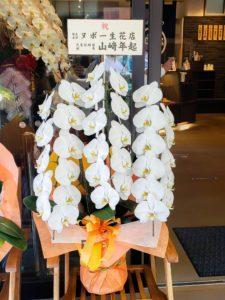 【事例紹介】おやき店の新規オープンに贈る胡蝶蘭