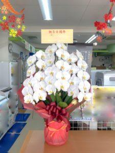 【事例紹介】50周年記念に贈る胡蝶蘭